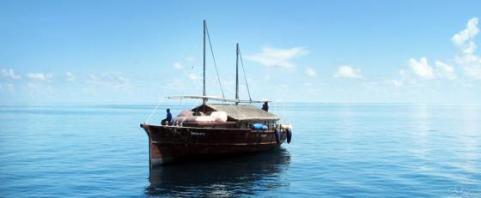 boatpeace